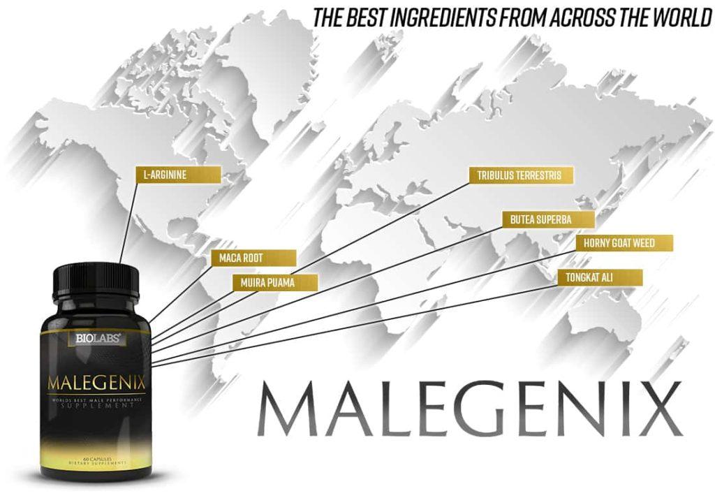 ingredients of Malegenix