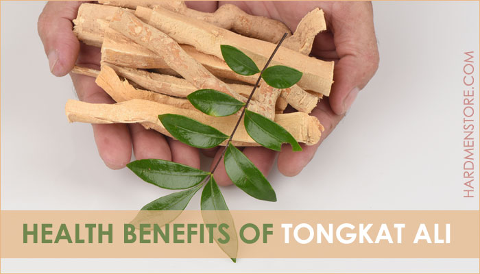 health benefits of Tongkat Ali