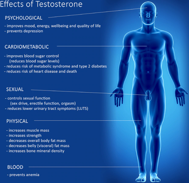 What are the main causes of low testosterone?
